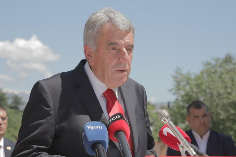 Neven Gošović