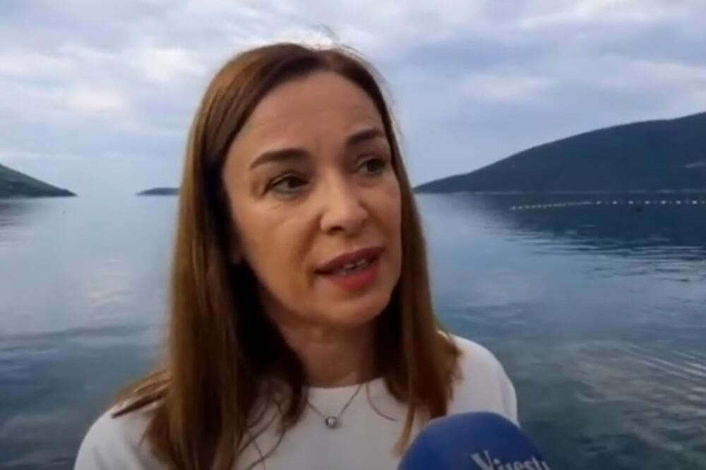Terzić, Foto: Screenshot/TV Vijesti