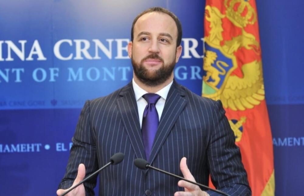 Nikolić: Radulović pokazivao nekompetentnost, ali i nepoznavanje i...