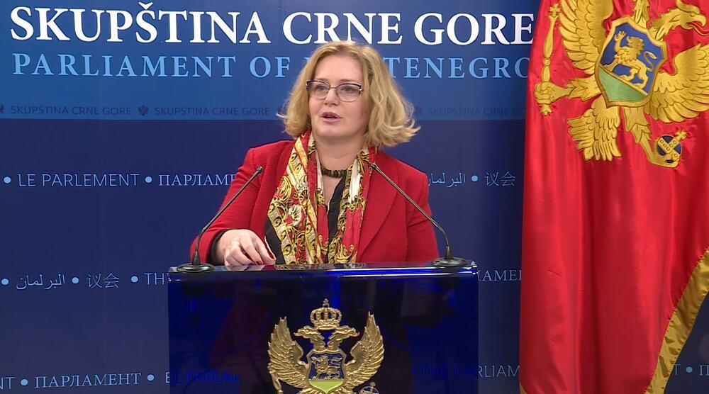 Bošnjak: Delegirali smo kompetentna kadrovska rešenja, Radulović...