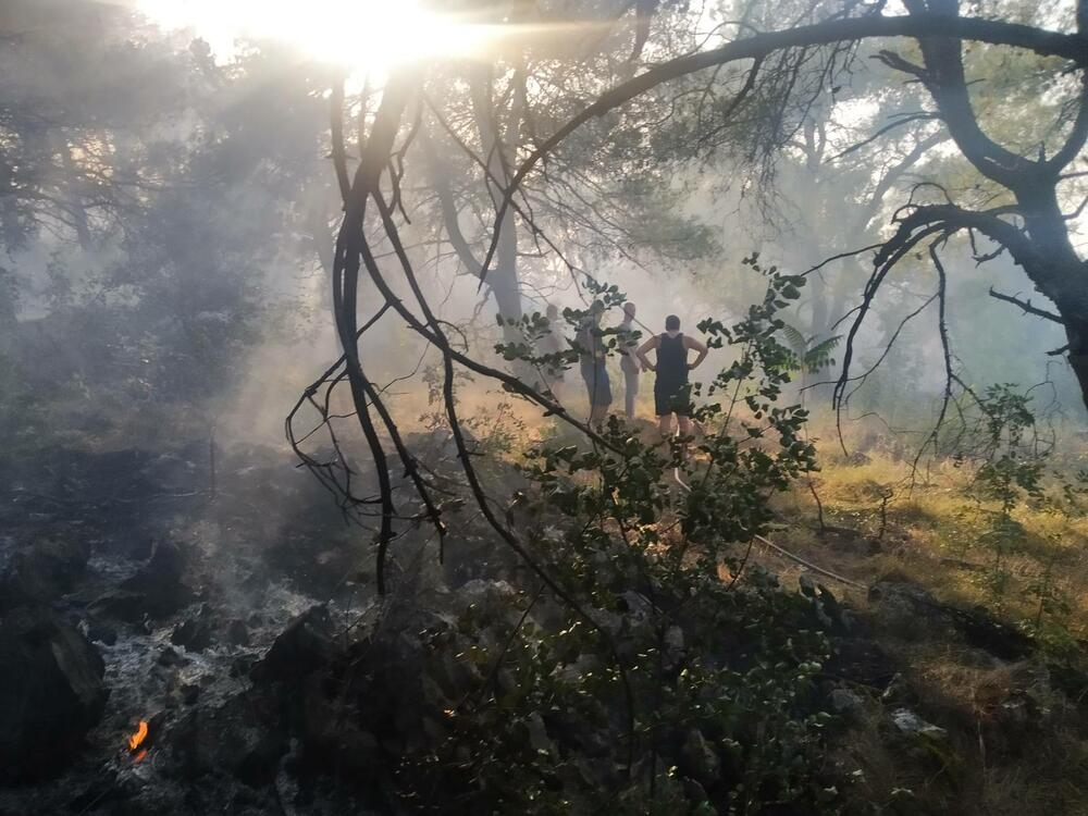 U požaru na brdu Gorica izgorjela ogromna površina zelenila i...